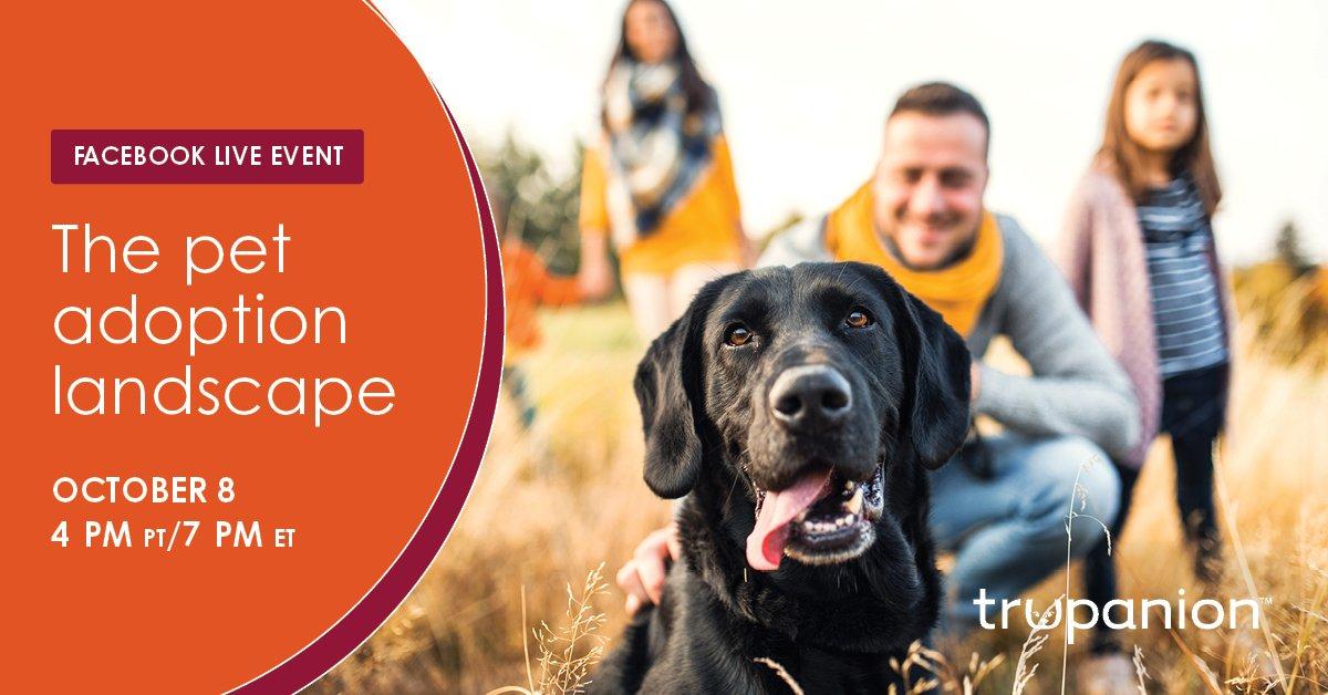 Pet Adoption Landscape Facebook header