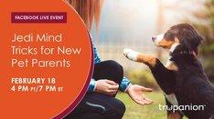 Facebook Live | Jedi Mind Tricks for New Pet Parents: Training for Success