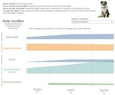 Interactive Graph: Top Drivers of Veterinary Cost by Dog Breed and Age