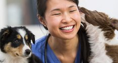 The Best Way to Help Clients Research Medical Insurance for Pets