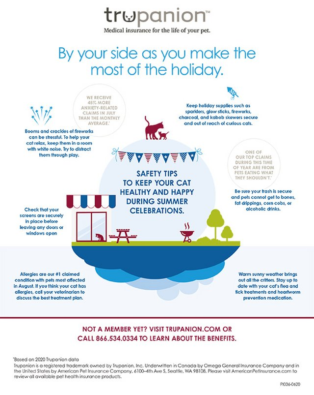 Summer Safety Tips for Cats
